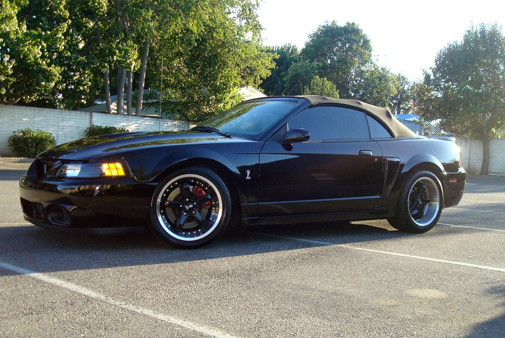 Mustang Cobra Black Rims Find The Classic Rims Of Your Dreams Www Allcarwheels Com Mustang Cobra Mustang 2000 Ford Mustang