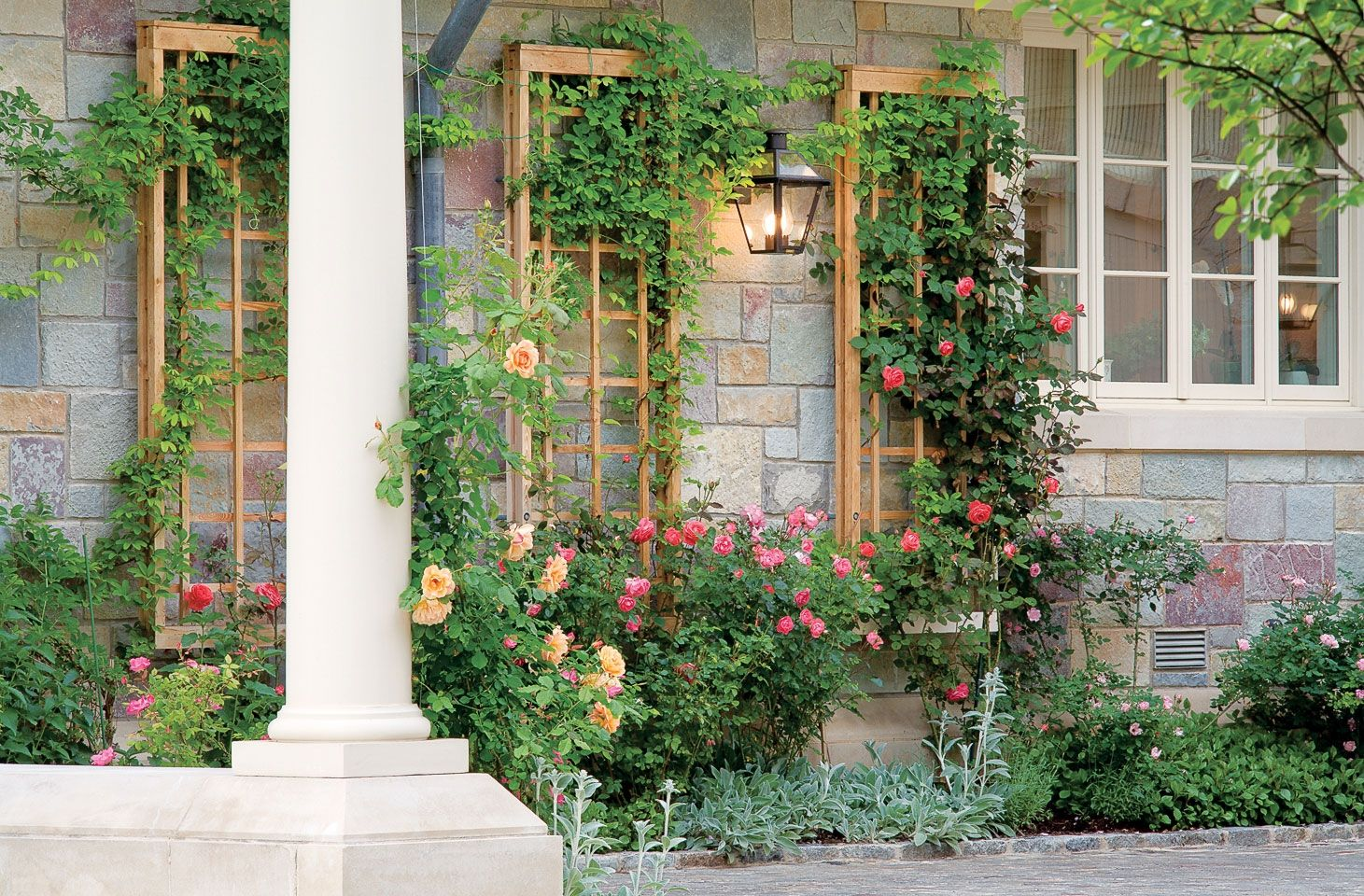 Ordinary Garden Trellis Ideas 10 Of The Best Part - 2: Garden Trellis Ideas 10 Of The Best