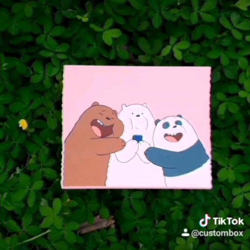 Caixa Urso Sem Curso 🐼🐻🐨