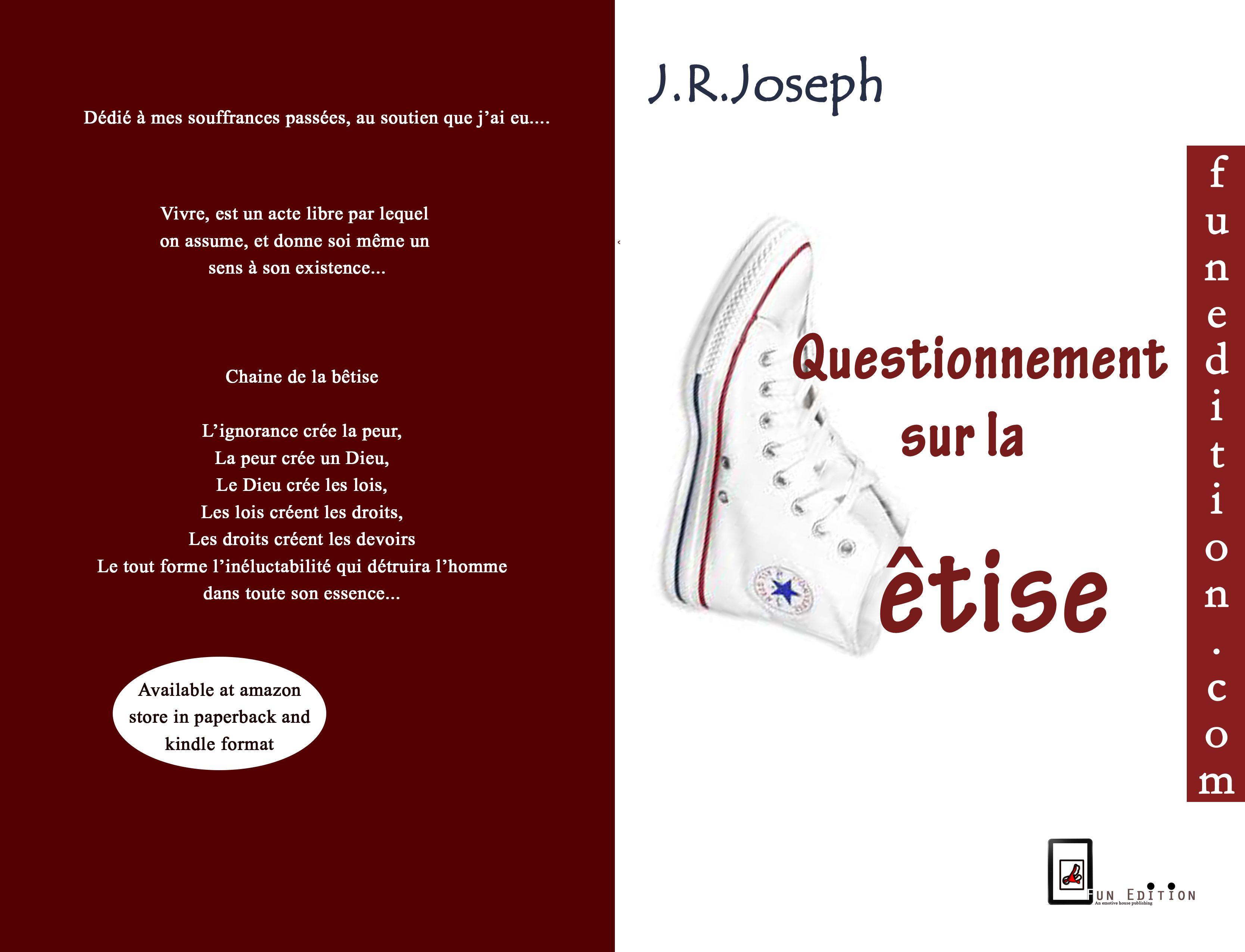 cover of questionnement sur la betise