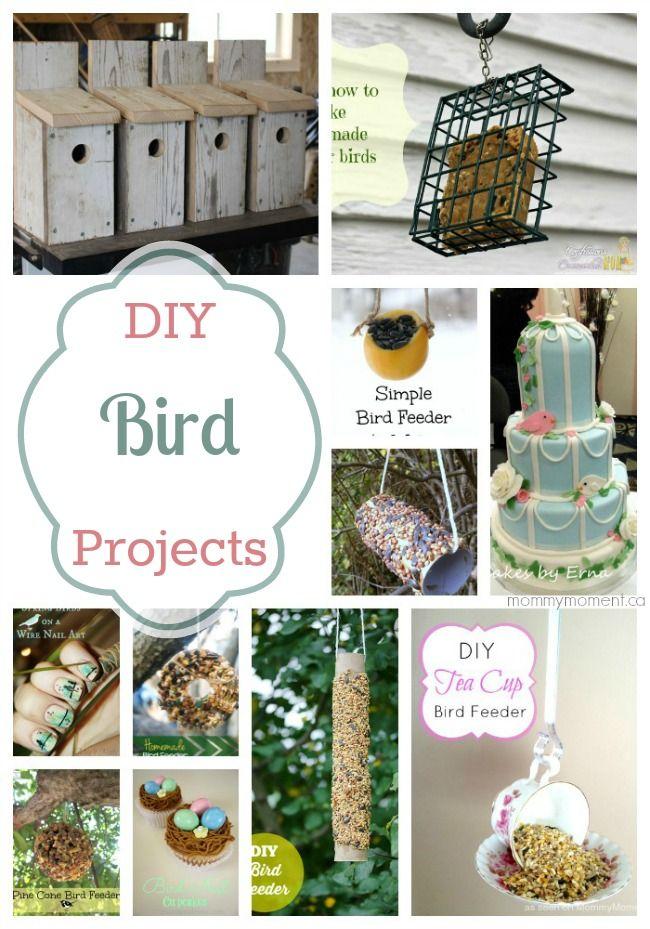 Birds, Birds, Birds! DIY Bird Projects
