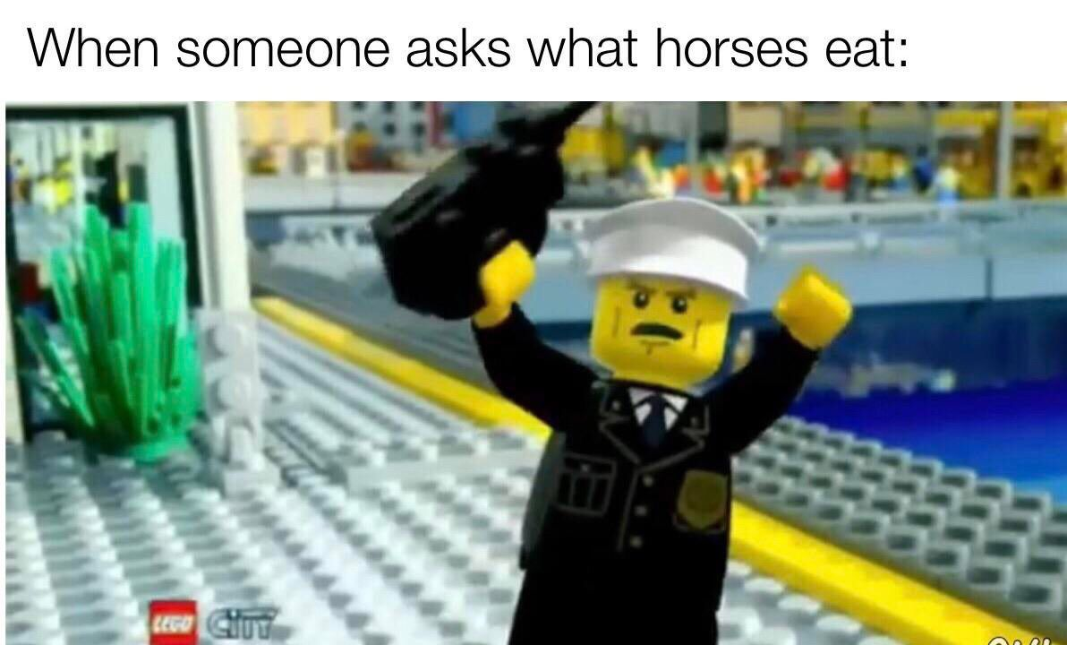 Pin By Xenoxh Vector On Funny Things I Found In My Backyard Funny Memes Lego Memes Memes
