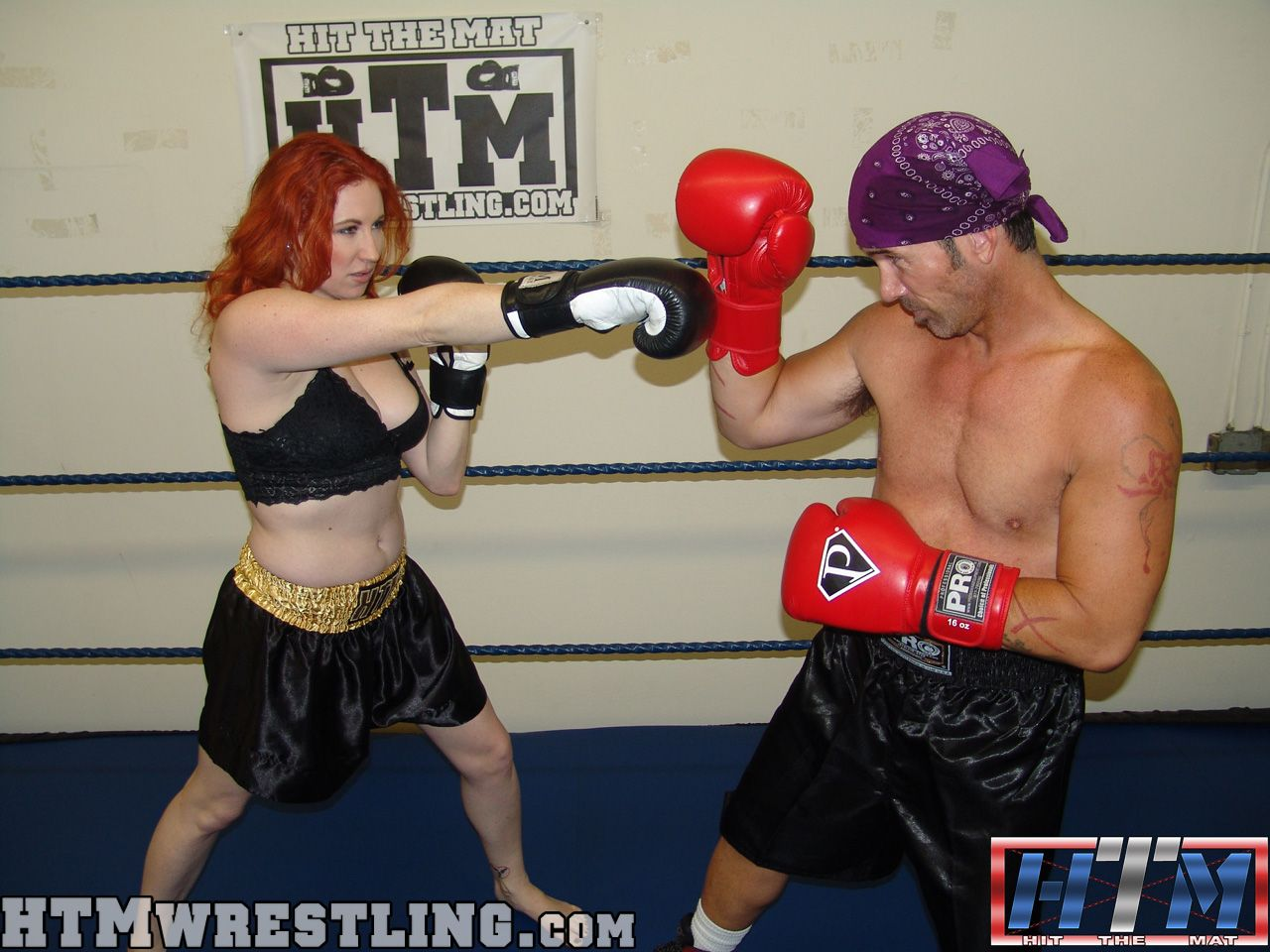 9f3c0b3fe6155464b6d617bf9f1a61ce mixed boxing shauna ryanne vs rusty deadlier than the male
