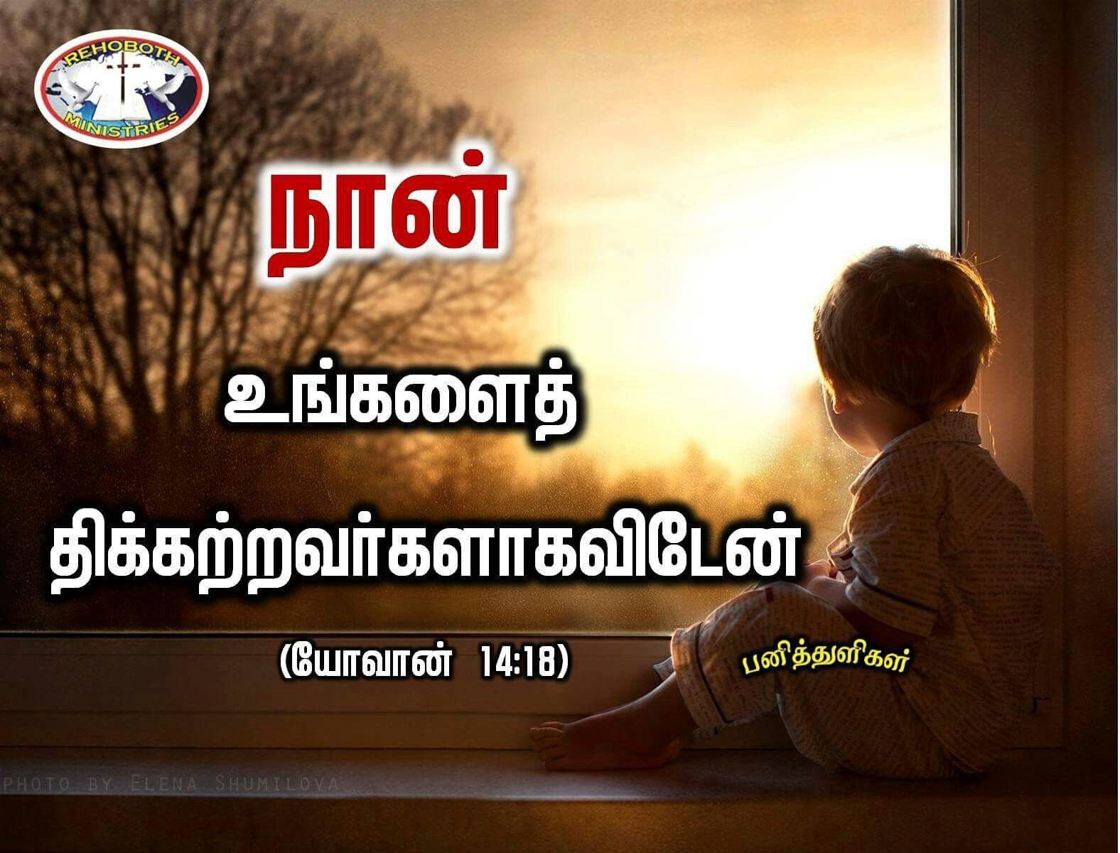 I Will Not Leave You Comfortless With Images Bible Words