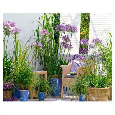 Pin de jantonio gomez en patios y jardines pinterest for Deco jardines pequenos