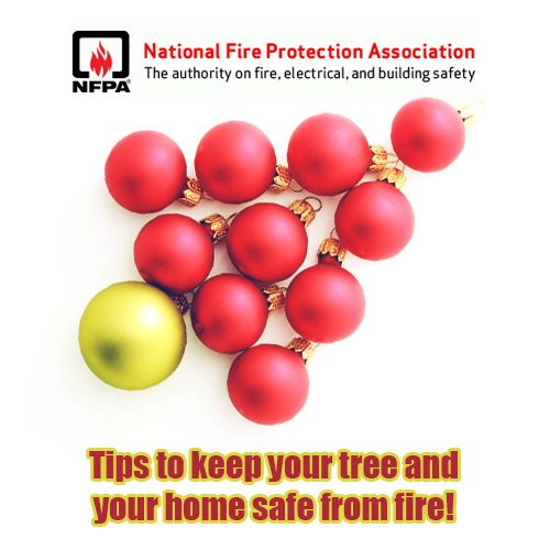 Christmas Tree Safety Tips: http://ow.ly/rNDyn #reynoldsrestorationandcleaning