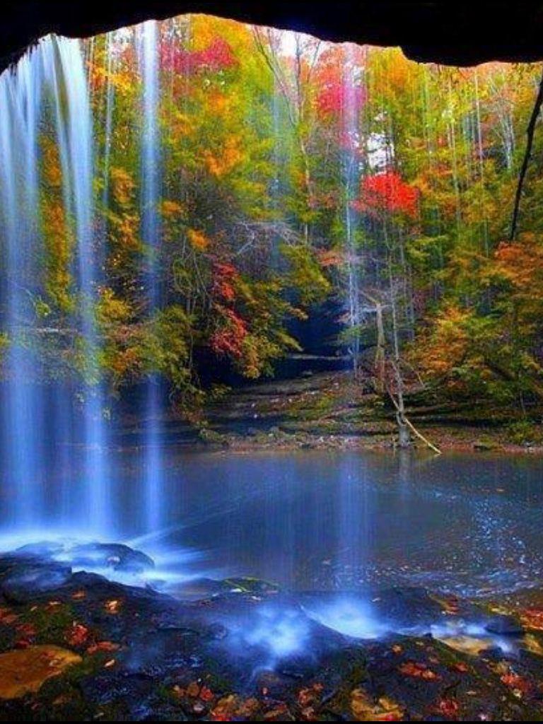 Сверкающие картинки природа