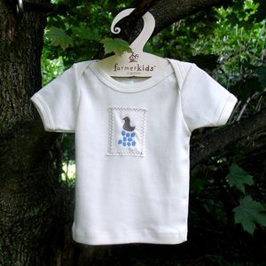 which came first the chicken or the egg? Cute chicken and blue eggs tee or one piece for your organic little kid!