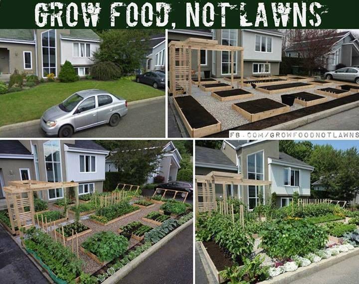 Garten statt Rasen