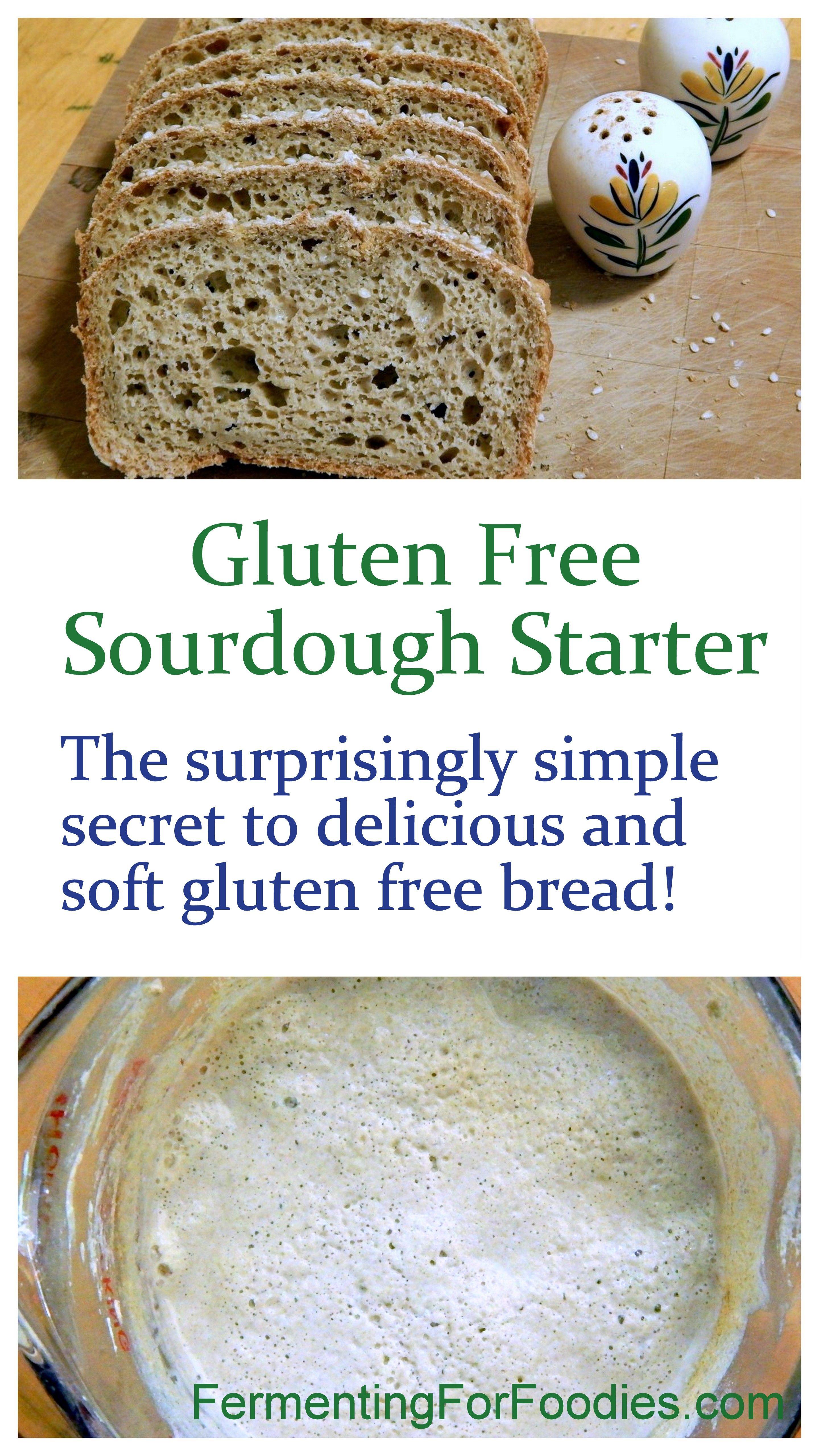 Gluten Free Sourdough Starter Fermenting For Foodies Recipe Gluten Free Sourdough Gluten Free Sourdough Starter Gluten Free Bread