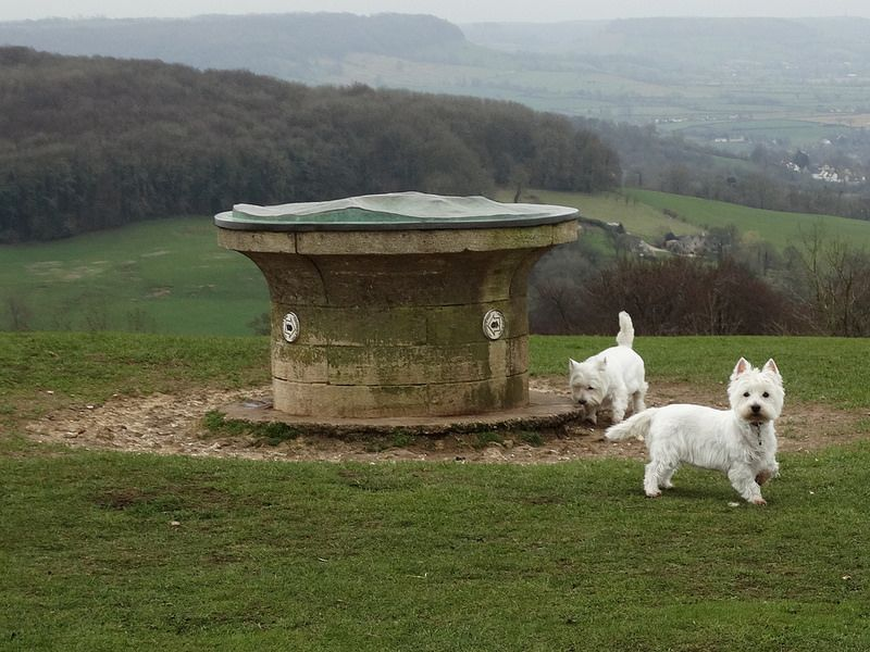 Haresfield, Gloucestershire ... the girls at the topograph.