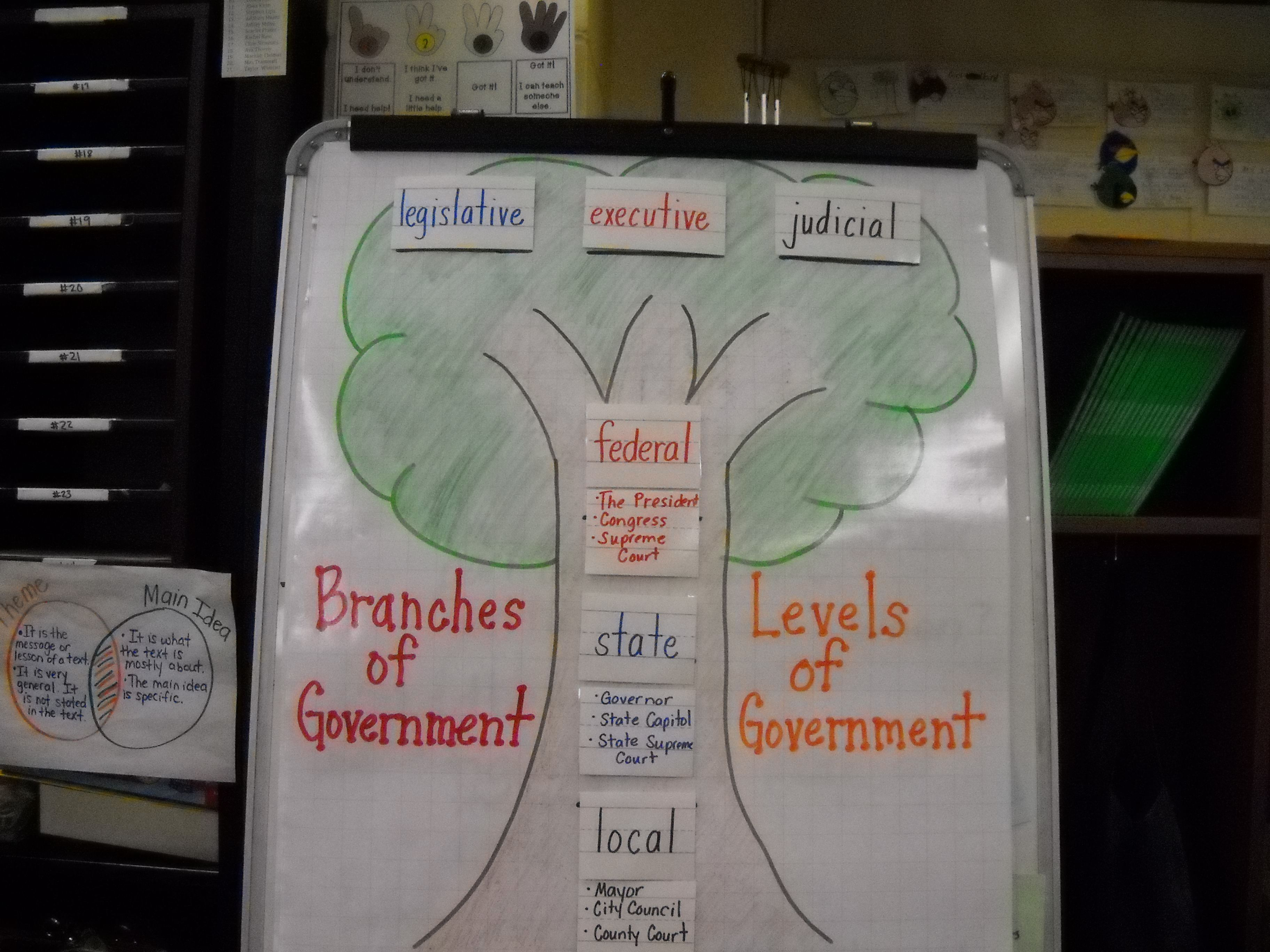 Branches And Levels Of Government Poster