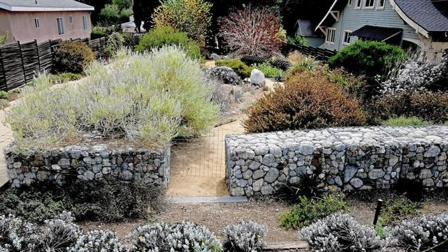Low Water Garden Design