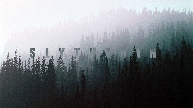 Slytherin Landscape Wallpaper Hd Wallpaper Desktop Aesthetic Desktop Wallpaper