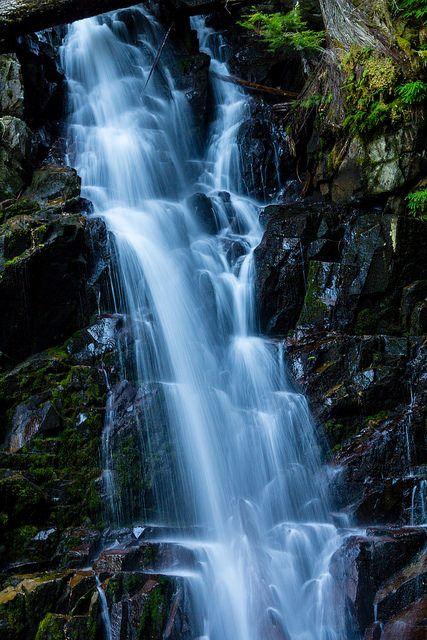 Week 15 Bottom Of Falls Carbon Creek Road Trails Mt Rainier National Park