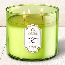 Eucalyptus Mint 3-Wick Candle - Home Fragrance 1037181 - Bath & Body Works
