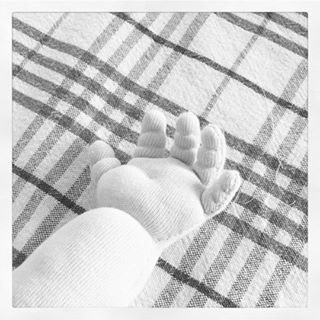 A little hand ???? #littlehannydolls #artdoll #dollart #dollartist #slowdoll #instaart #needlefelting #realisticdoll #realsizedoll #customdoll #collectdoll #dollcollecting #naturalfiberartdoll #oakdoll #waldorfinspireddoll #reborninspireddoll #reborndoll #clothesdoll #babypuppe #handmadedoll #handmade #手作 #dollsneedlefelt