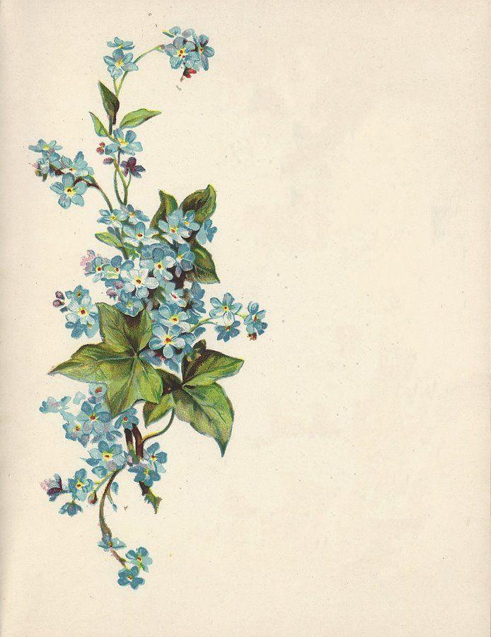 Glanzbilder - Victorian Die Cut - Victorian Scrap - Tube Victorienne - Glansbilleder - Plaatjes : Einladung etc. #victorian