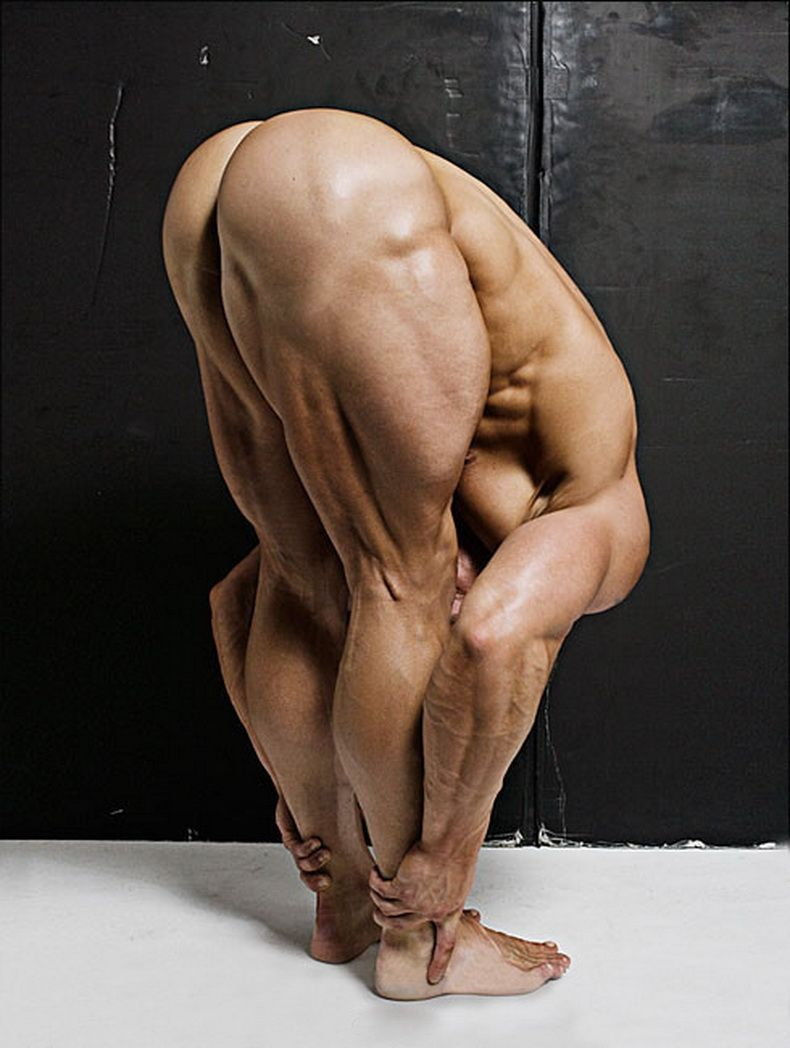 The musculature and stance make it seem like this is a bunch of ...