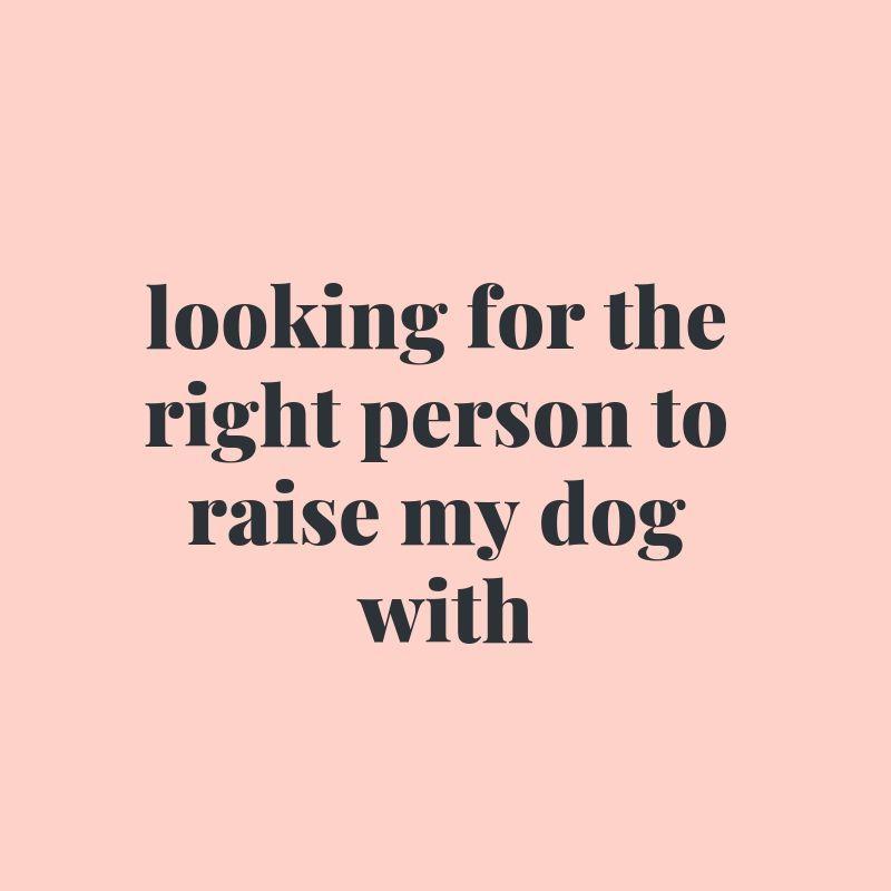 40 Shareworthy Dog Mom Quotes You Ll Love Dog Mom Quotes Dog Quotes Funny Dog Lover Quotes