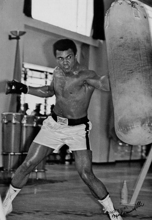 biography of muhammad ali cassius marcellus clay Muhammad ali, arguably the most famous professional boxer in the 20th century and the only fighter to win the heavyweight championship three times, was born cassius clay in 1942 in louisville, kentucky, to cassius marcellus clay, sr and odessa grady clay at the age of 12 clay began training as a boxer.
