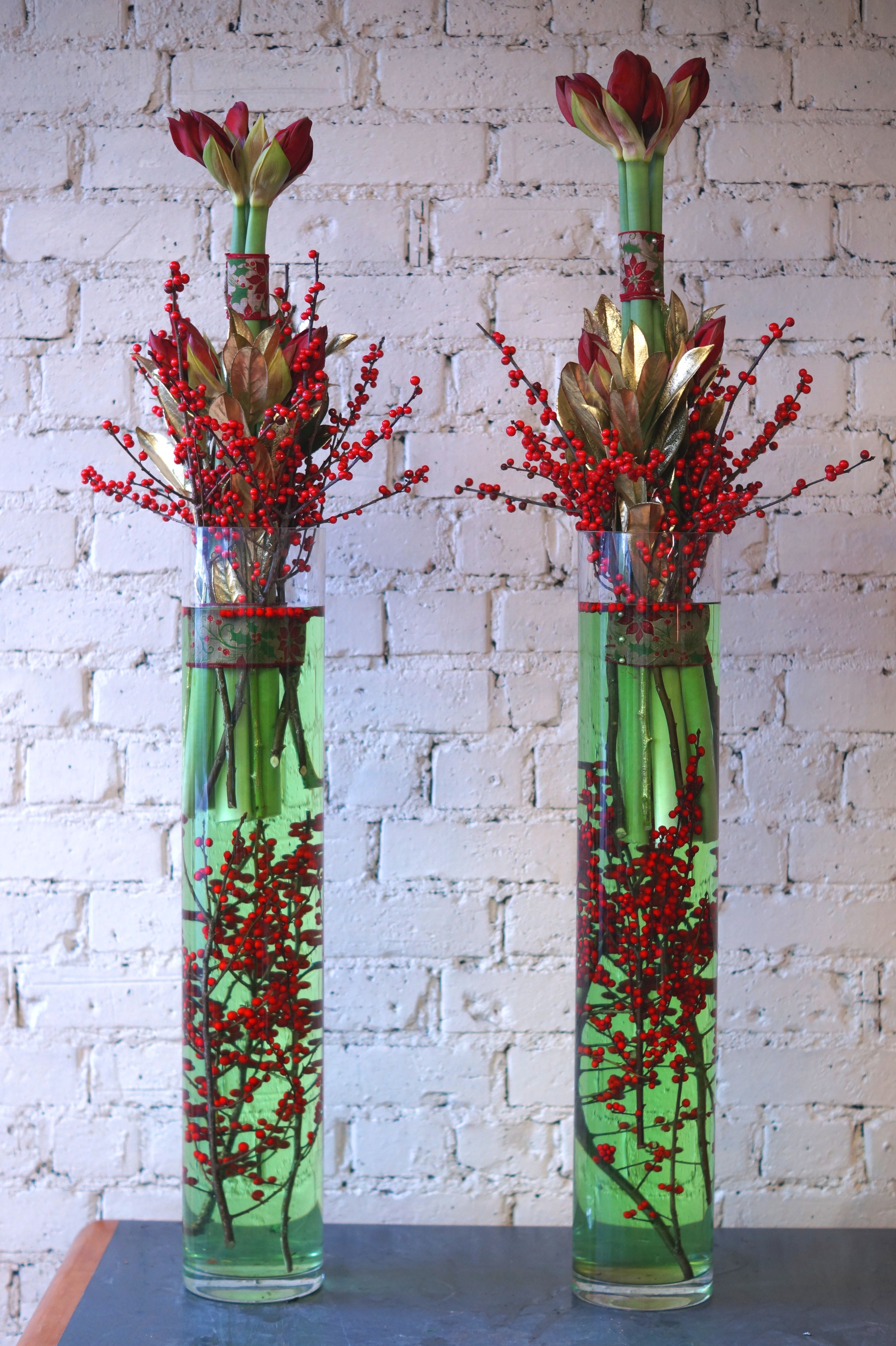 Festive modern arrangements using red amaryllis red ilex berries festive modern arrangements using red amaryllis red ilex berries and gold laurel arranged in tall cylinder vases with dyed green water to add an extra bit reviewsmspy