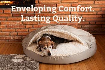Snoozer Dog Beds Dog Beds For Small Dogs Cave Dog Bed Snoozer