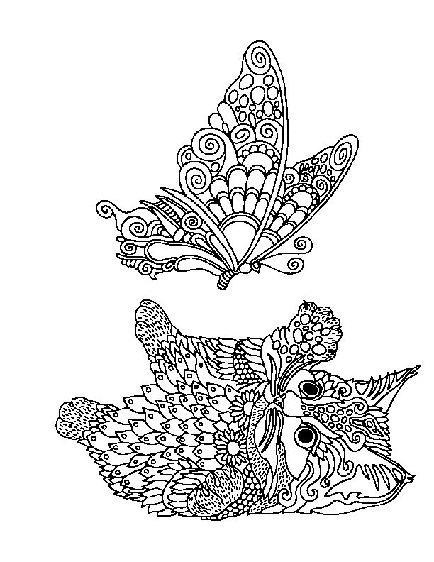 kittens and butterflies coloring book by katerina svozilova http