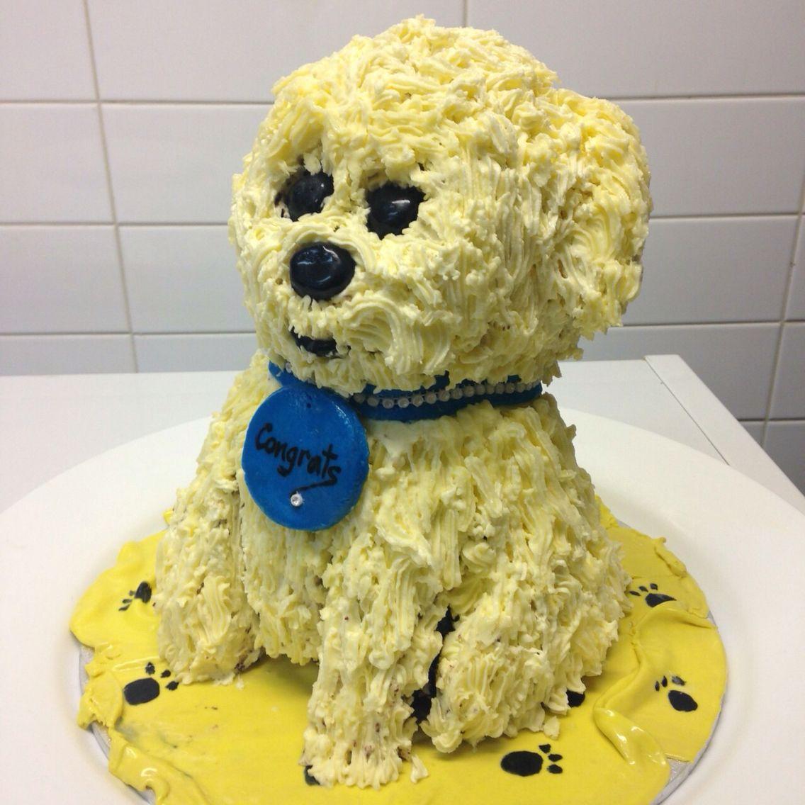 Congratulations puppy surprise cake my cake creations pinterest