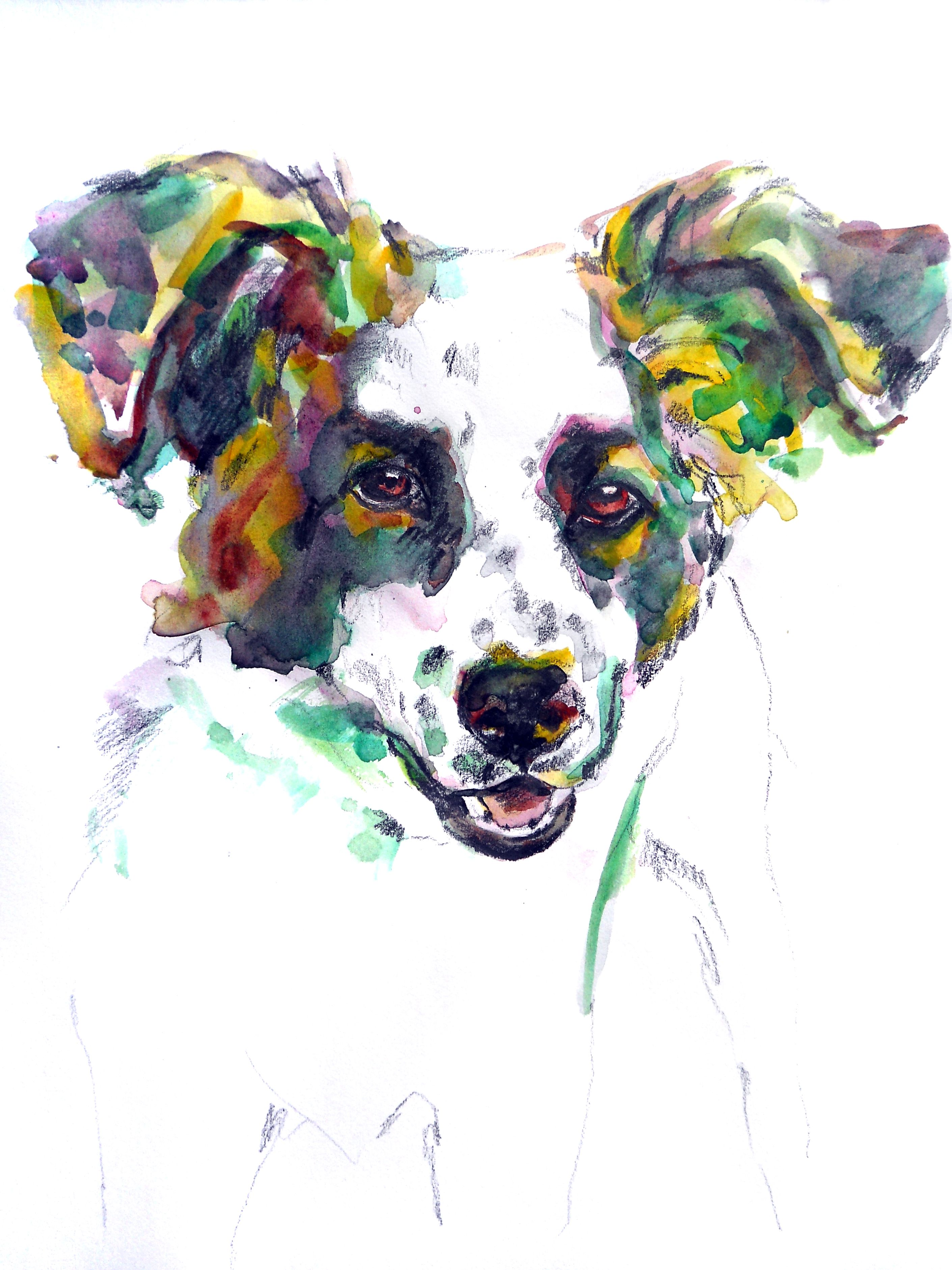 my watercolors- My Doggie