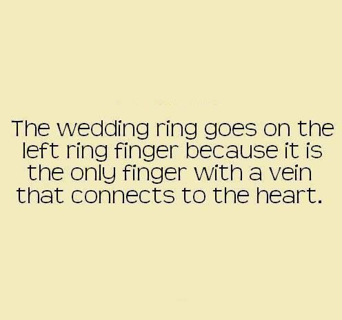 idk if this is true or not, but if it is..<3