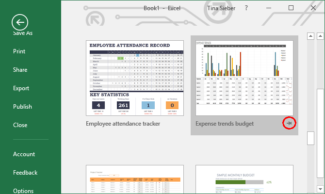 Useful Excel Templates For Project Management  Tracking