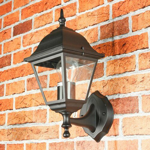 Brambly Cottage Covington 1 Light Outdoor Wall Lantern Outdoor