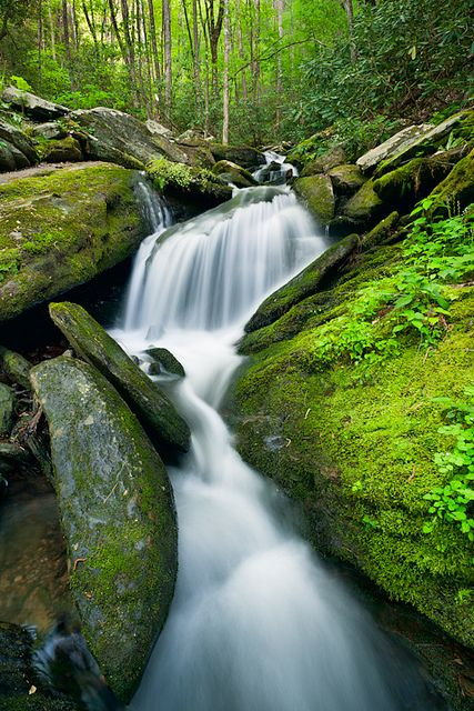 Mossy Waterfall: Great Smoky Mountains National Park, Tennessee by michelblanchette