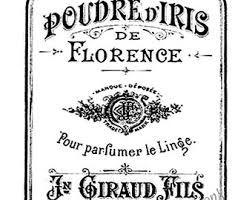 Image result for vintage violetperfume labels