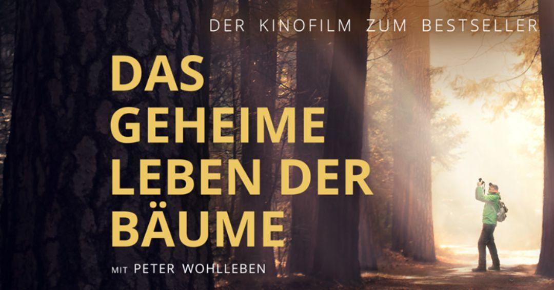 Kino Das Geheime Leben Der Bäume