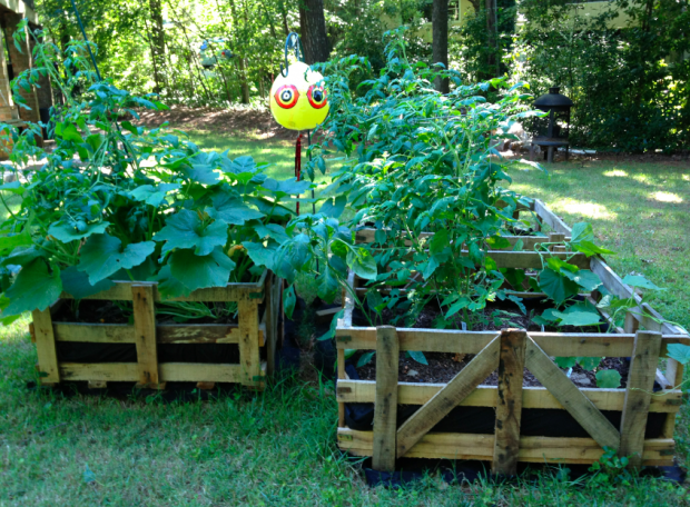 25 diy ideas using pallets for raised garden beds snappy pixels - Garden Ideas Using Pallets