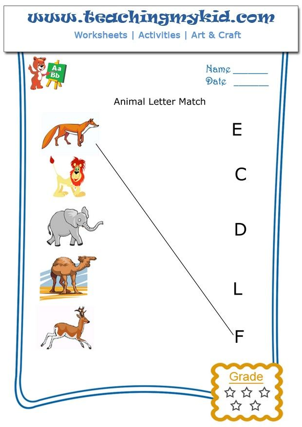 Match the animal with the first letter of their name for Animals with the letter o in their name