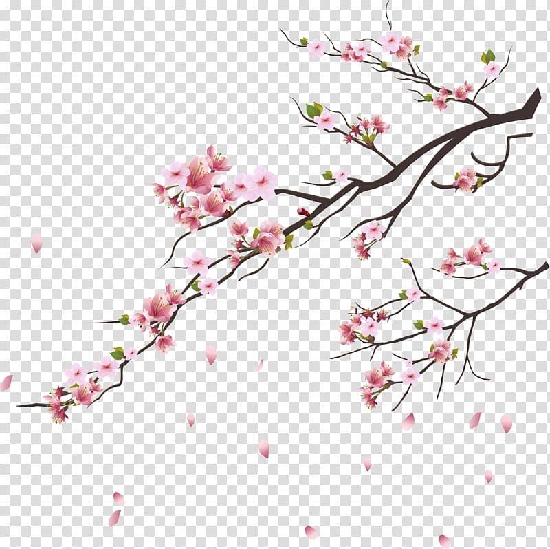 Cherry Blossom Tsukasa Of Tokyo Branch Pink Cherry Blossoms Pink Cherry Blossoms Illustrati Pink Blossom Tree Cherry Blossom Art Cherry Blossoms Illustration