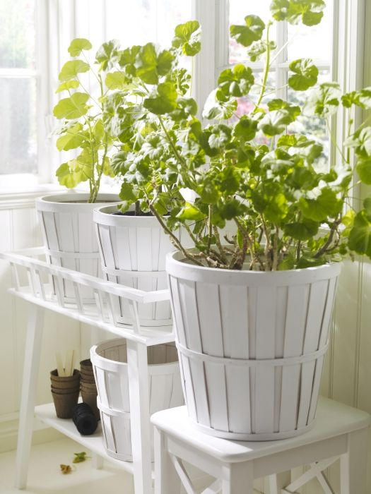 Bring the outdoors in plants add life to a space and some - Better homes and gardens flower pots ...