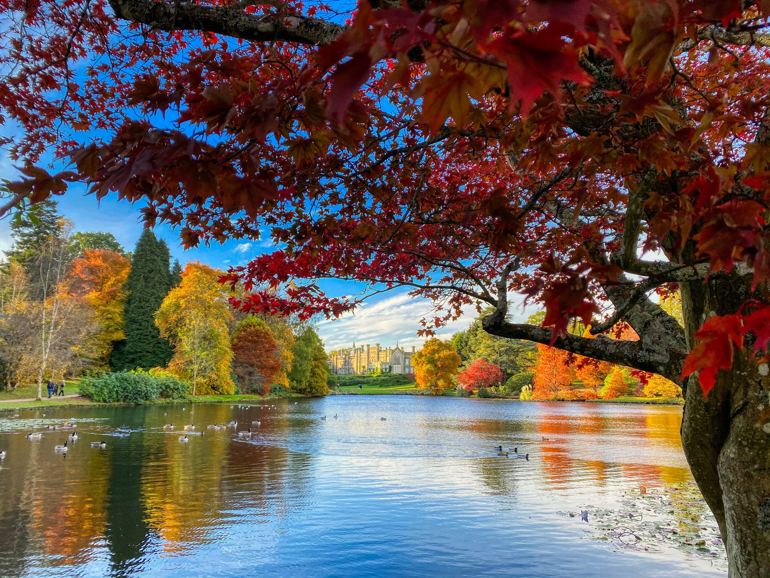 Sheffield Park Gardens in Autumn Uk landscapes