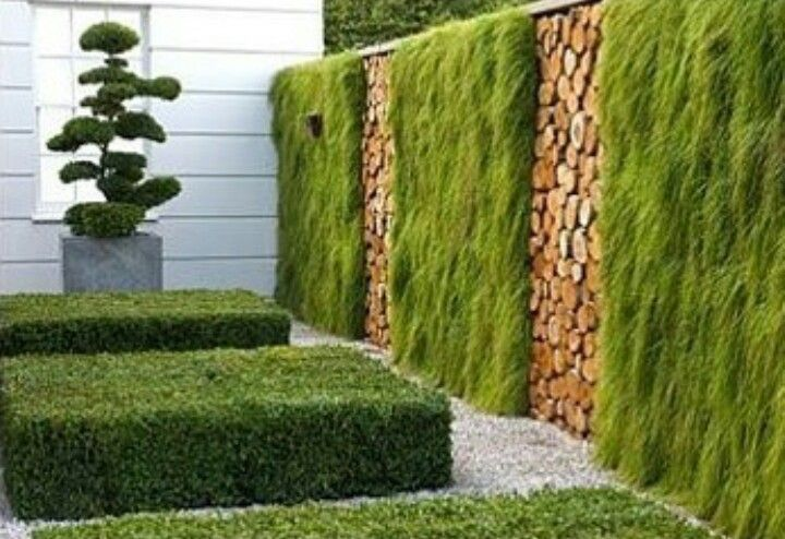 green wall garten pinterest sichtschutz z une und vertikal. Black Bedroom Furniture Sets. Home Design Ideas
