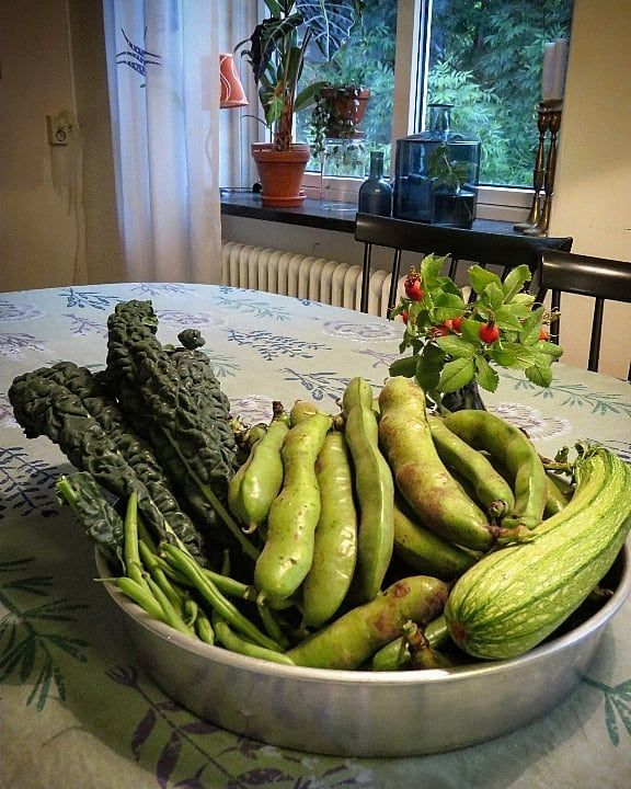 August treasures from the allotmentgarden