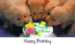 Gratis Afbeeldingen Verjaardag Google Zoeken