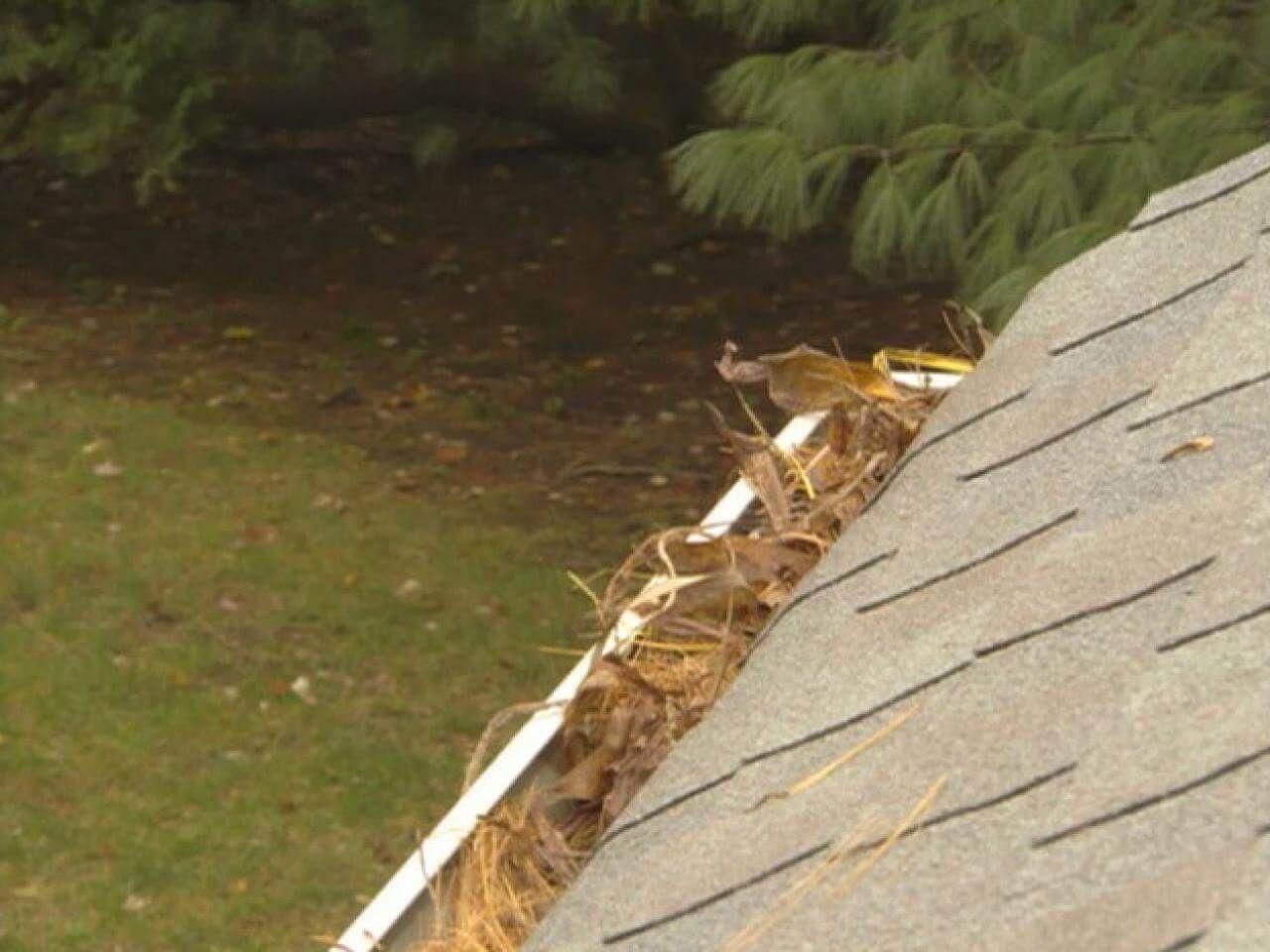 Clogged Gutters Mean A Compromised Roof Gutter Cleaning Repair Diyroofingtips Roof Repair Diy Roofing Roof Repair Diy