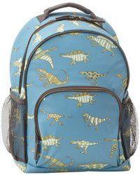 Boys dinosaur backpack!