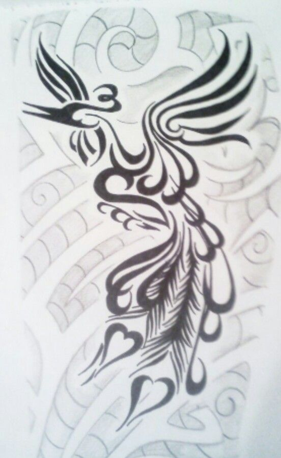 Tribal Peacock Tattoo Peacock Tattoo Tattoos Tribal Artwork