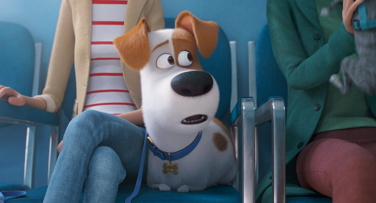 The Secret Life Of Pets 2 Trailer And Poster Secret Life Of Pets Dog Movies Secret Life