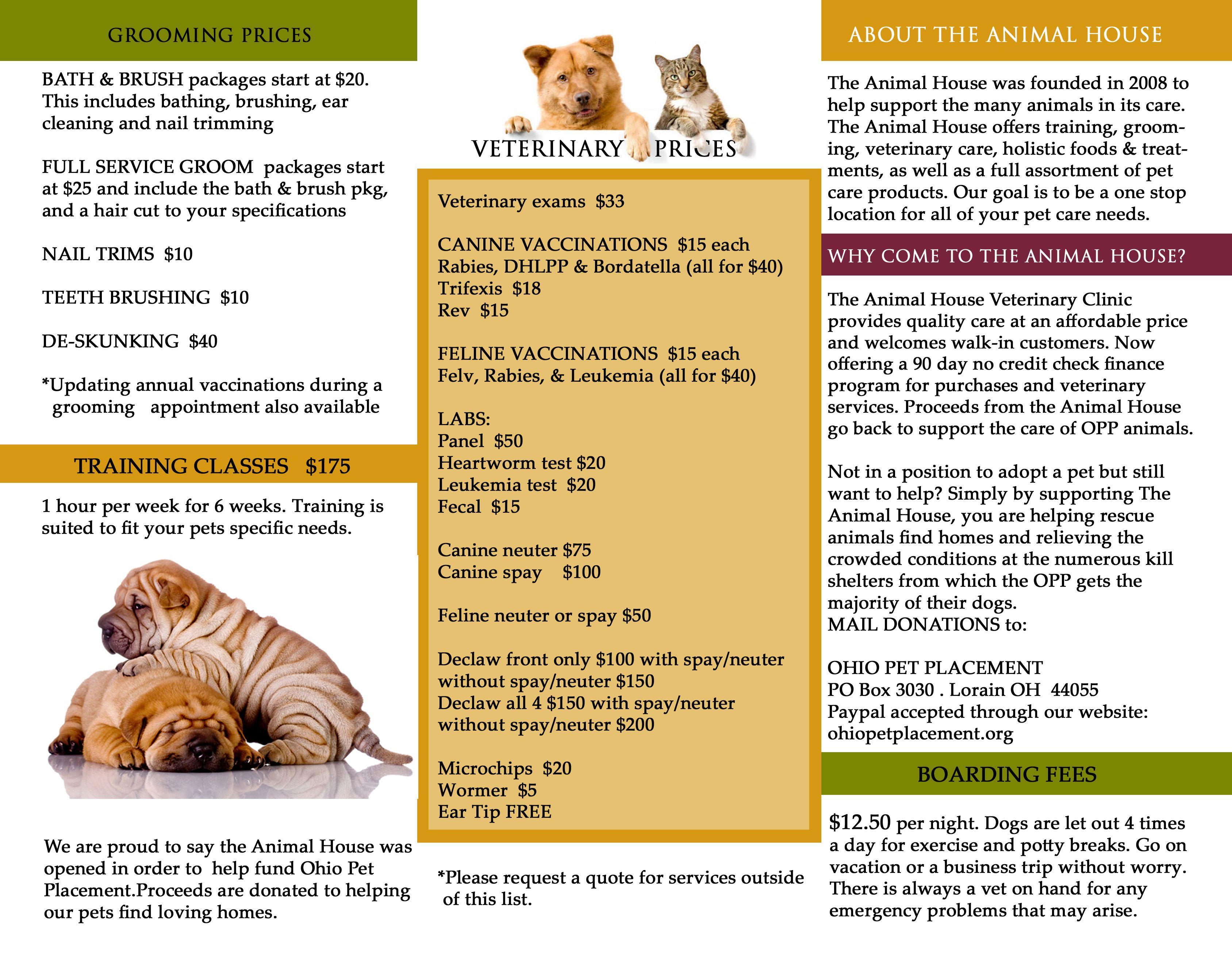 Tri Fold Brochure Inside Holistic Recipes Veterinary Care Bath Brushes