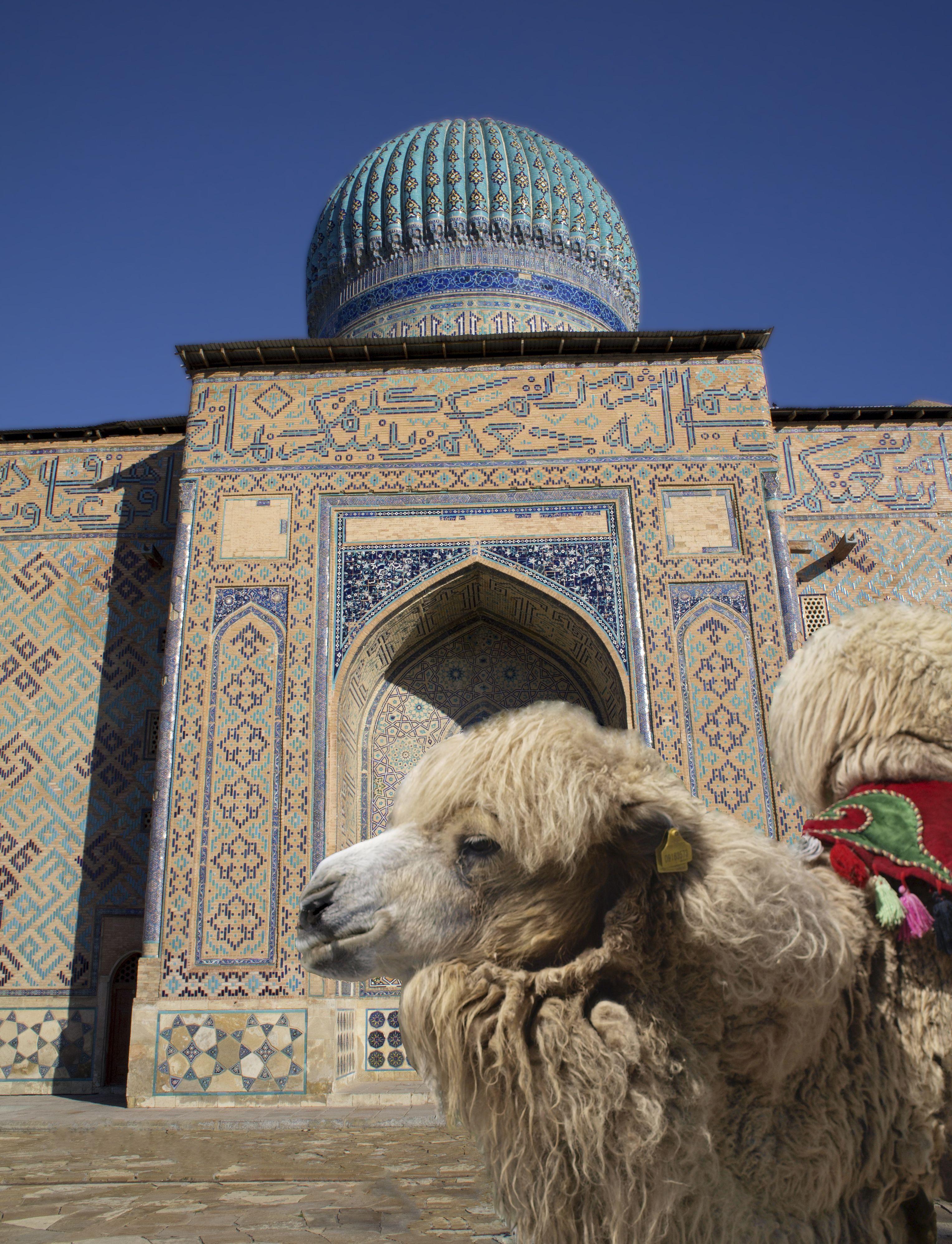 History About Kazakhstan Kazakhstan Means Land Of The Kazakhs History Of Kazakhstan Kazakh Travel Honeymoon Backpack Backpacking Vacation Ural Kasachstan